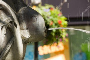 La fontaine aux dauphins de la place de la République à Haguenau