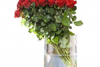 Bouquet de rose détouré