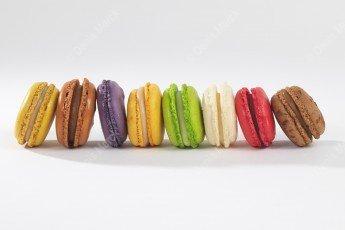 Macarons alignés