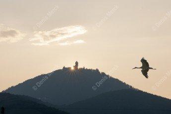 Château du Haut Koenigsbourg au coucher du soleil