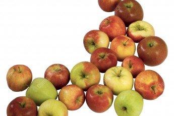 Assortiment de pommes détourées