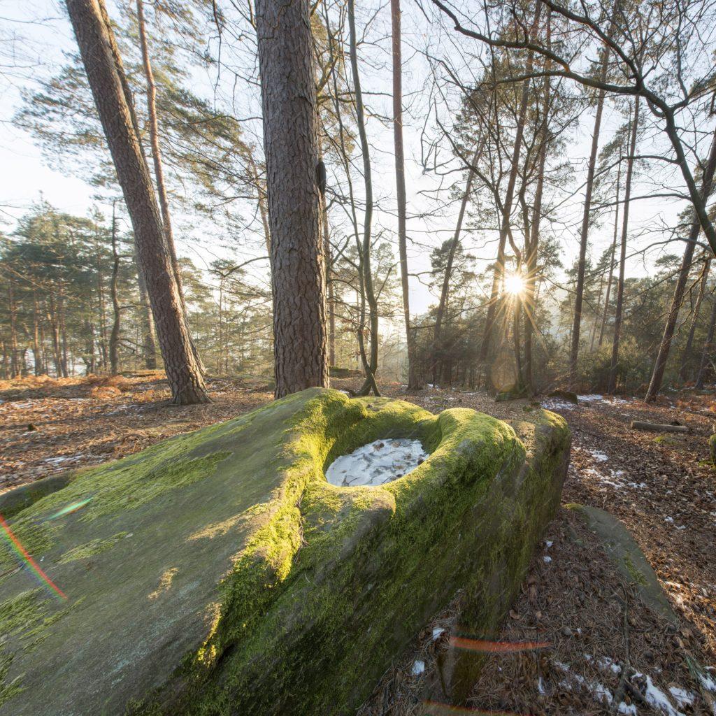 La pierre à cupule de Wingen dans le nord-est de la France