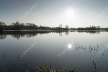 delta de la Sauer