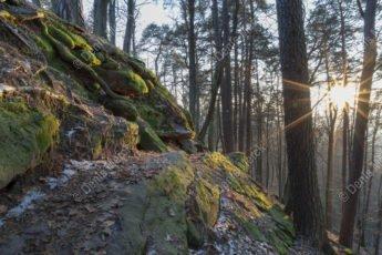Le sentier des roches
