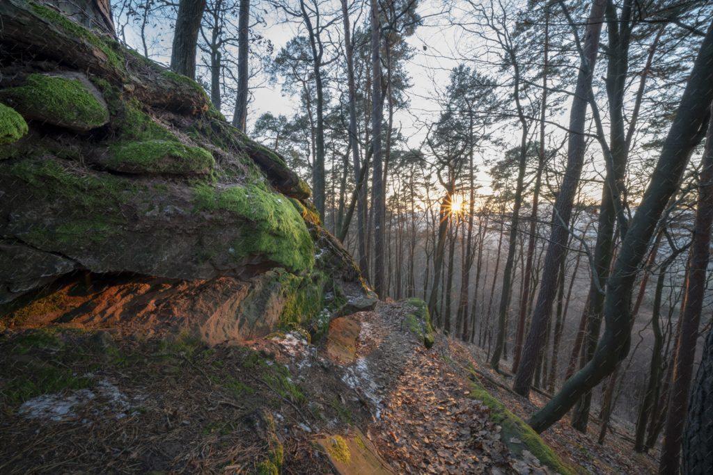 Le sentier des roches du Fleckenstein