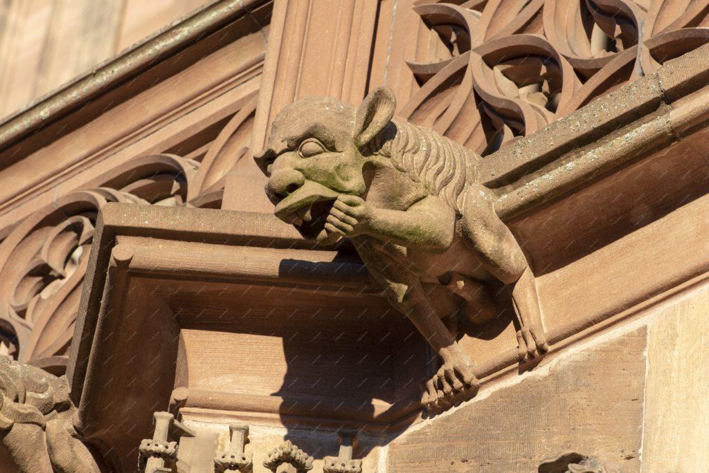 Les gargouilles de la cathédrale Notre-Dame de Strasbourg