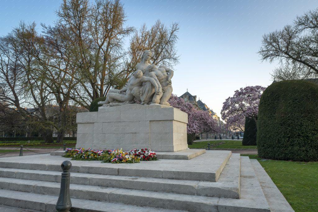 les magnolias de la place de la République de Strasbourg